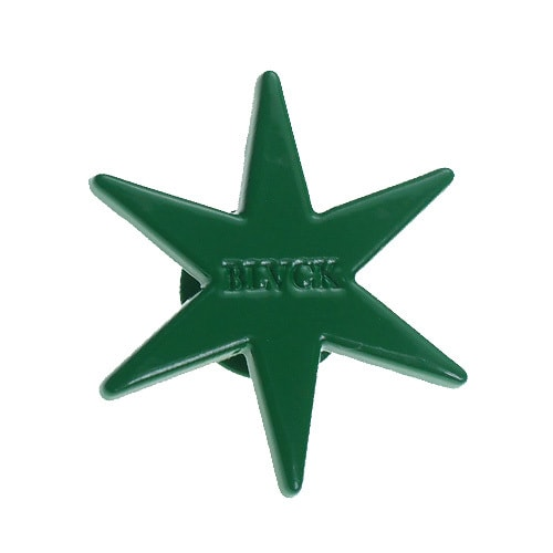 BLACK SCALE - SIX POINT STAR PIN / GREEN -